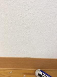 スタッフブログ|大掃除|ルナしっくい|メンテナンス|画像05
