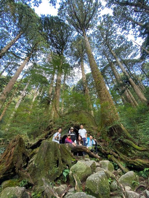 スタッフブログ|自然を満喫する旅|縄文杉|画像12