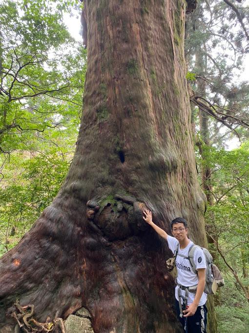 スタッフブログ|自然を満喫する旅|縄文杉|画像13